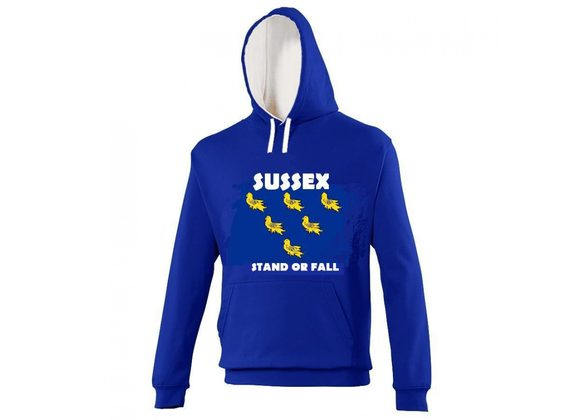 Stand or Fall Hoodie
