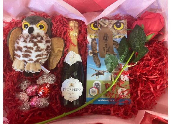 Valentines Gift Box and Two Adult Admittance Tickets